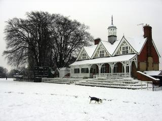 Snow and dog in the University Parks