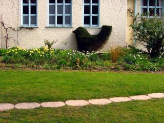 Bird shaped hedge