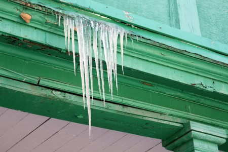 Icicles on green wood