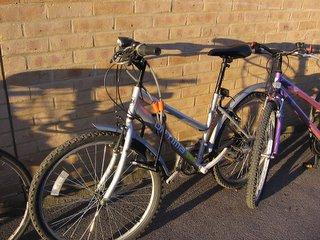 Bikes outside the SSL