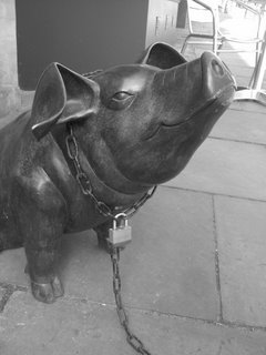 Chained pig, Bath