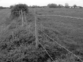 Hilltop barbed wire