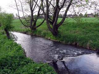 River near Woodstock