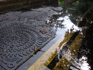Puddles on Church Walk