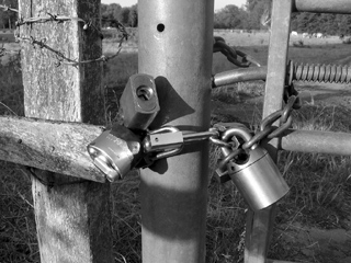 Locks on a gate