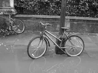 Bike in a puddle on Merton Street