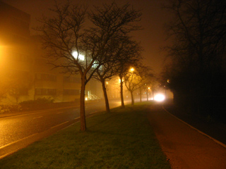 Fog on Parks Road, Oxford