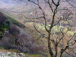 Cliffside view, Snowdonia