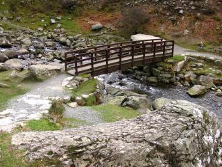 Bridge in nature reserve