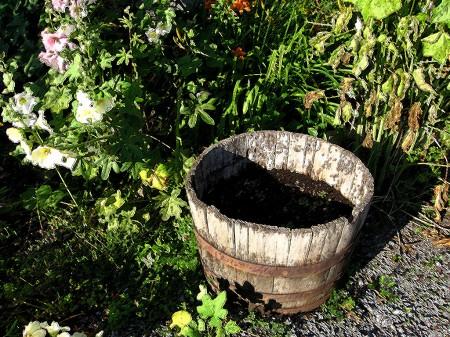Garden with wooden planter