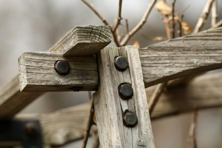 Wood frame in a garden