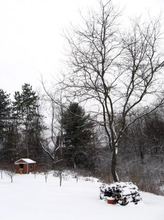 Vermont snowscape