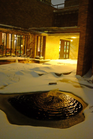 Snow around the Massey pond
