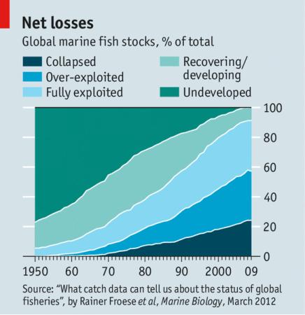 Global marine fish stocks, % of total