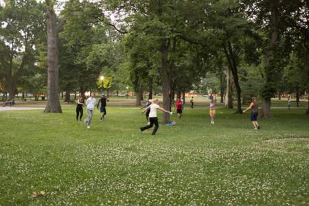 Running around a tree