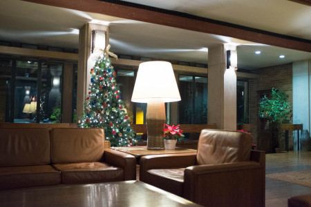 Common room with Christmas tree
