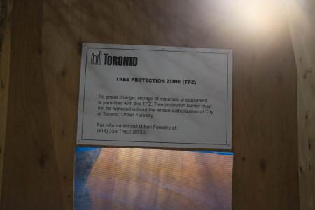 Toronto Tree Protection Zone