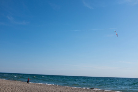 Two-string kite on beach