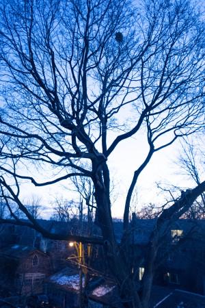 Winter and the Third Floor Neighbourhood