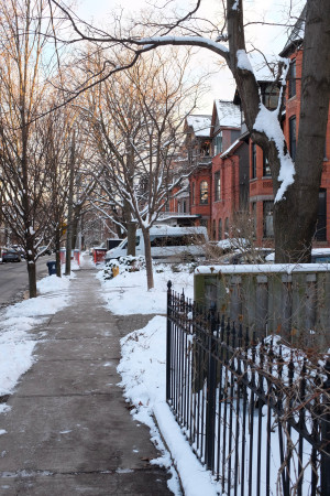 Markham Street, February