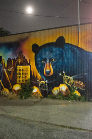 Bear mural by night