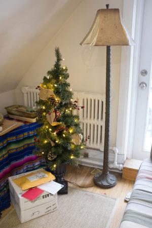 Markham Christmas tree